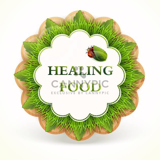round shaped green eco label with healing food on white background - Free vector #127956