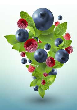 summer ripe berries with mint leaves - vector gratuit #130496