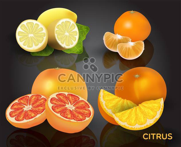 Set of citrus fruits on dark background - Free vector #130586