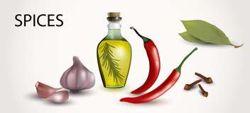 Vector illustration of spices and flavorings on white background - vector #132036 gratis