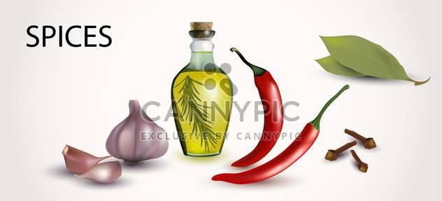 Vector illustration of spices and flavorings on white background - Free vector #132036