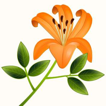 beautiful vector illustration of orange lily flower with green leaves on beige background - vector gratuit #126296