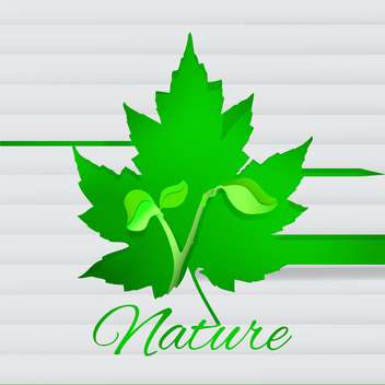 Vector white background with new fresh young plant - Free vector #126736