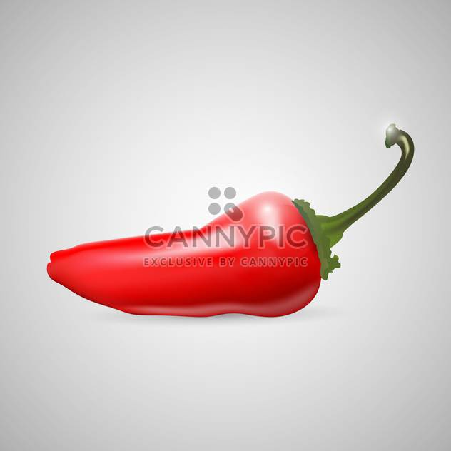 Red Hot chilli pepper on grey background - Free vector #127716