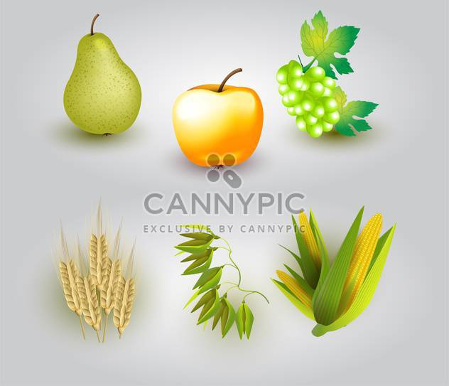 Vector illustration of group of fruits and some ears of wheat. - Kostenloses vector #128496
