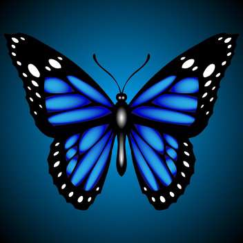 blue vector butterfly illustration - Free vector #129136